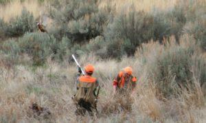 Arlington Oregon Bird Hunting